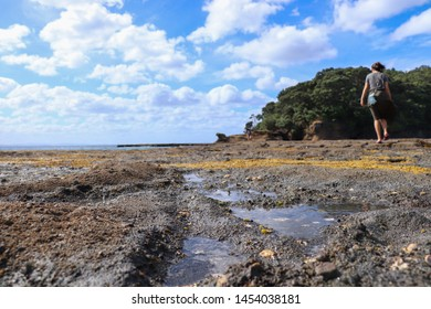 A undefined girl hanging out in Goat Island Marine Reserve near Leigh North Island New Zealand. Spaces for your text. Shallow depth of field. Low angle and focus is on the ground.