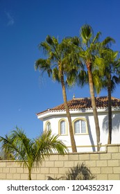 Undefined luxury white house for sale or for rent, modern house with big palm trees and high stone fence