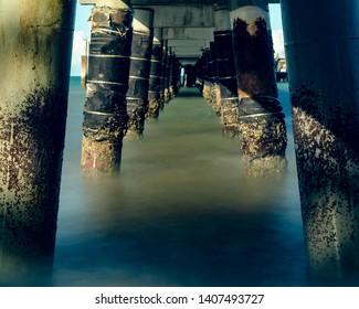 Under the board walk palm cove jetty