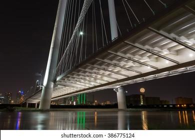under a bridge arcroos the trinity river in Dallas Texas