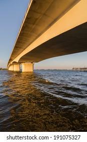 Under the Circus Bridge in Sarasota, Florida.