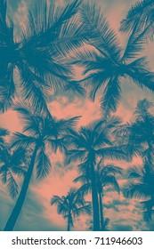 under coconut tree in retro tone