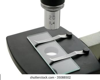 Under the microscope in laboratory