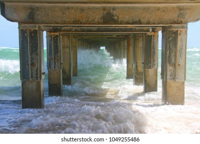 under the pier on the Dromana foreshore