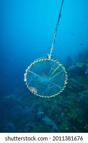 Under the sea, fish trap - Shutterstock ID 2011381676