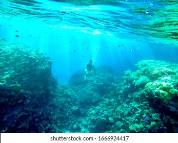 under water snorkeling -free dive  at Hurghada Egypt