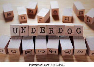 Underdog Word In Wooden Cube