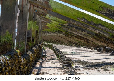 Underneath algae covered vertical and diagonal wooden sea defences at the mouth of the River Arun, Littlehampton, West Sussex, UK where this fast flowing tidal river meets the English Channel.