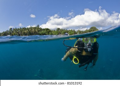 Under-over shot of a Female diver swimming at the surface with palm trees in the background