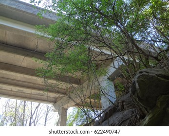 The underside of a bridge, framed by beautiful trees and a rock foundation on a sunny day. East Tennessee, USA.