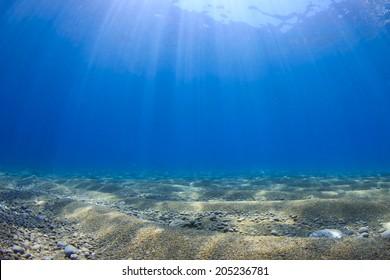 Underwater Blue Sea Background Photo
