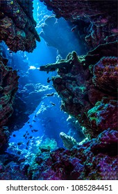 Underwater cave sunbeam view. Coral fishes in underwater cave vertical scene