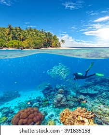 Underwater coral reef with scuba diver