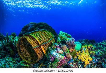 Underwater fishing basket scene. Fishing basket underwater. Underwater fishing view. Underwater world landscape