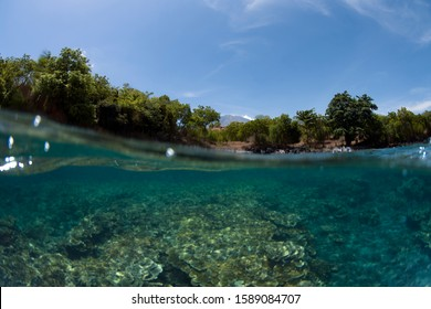 Underwater half photo, split photo. Mount Agung, Tulamben, Bali, Indonesia. Diving and underwater photography. Wide anle photo with fisheye lens.