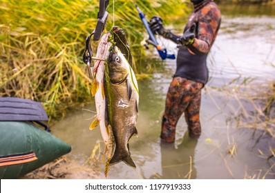 Fish Gun Images, Stock Photos & Vectors   Shutterstock