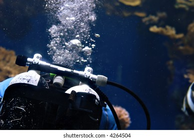 Underwater image of a Scuba diver in the red sea