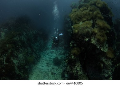 underwater landscape ,scuba diver explore deep blue sea and big rock .gulf of Thailand.