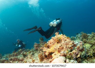 underwater maldives, group of aqualungers