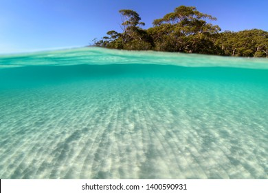 Underwater paradise, Jervis Bay, Australia