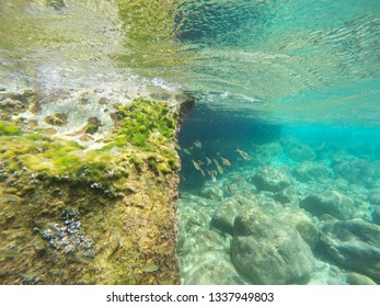 Underwater Penyon de Ifach rock nature reserve in Calpe Alicante province Spain