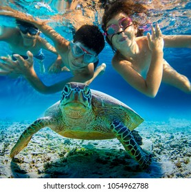 Underwater photo of children snorkeling and swimming with tropical sea turtle. Selective focus, blurred background