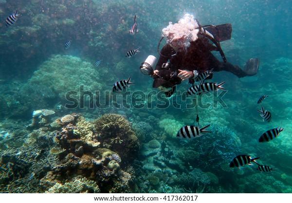 Photographe sous-marin photographié dans le Queensland de la Grande Barrière de Corail en Australie