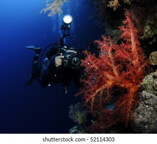 underwater photographer with red coral