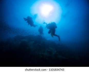 underwater photography underworld photography scuba dive tropical ship wreck silhouette dives into the sea fan