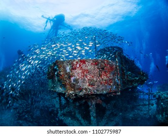 underwater photography underworld photography scuba dive tropical ship wreck sea fan colorful holiday travel summer vacation old