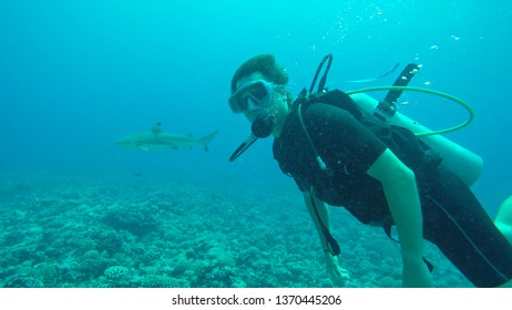 UNDERWATER, PORTRAIT: Male tourist diving in the Pacific meets an adult blacktip shark. Cool shot of a curious man exploring the stunning calm tropical sea and seeing a big shark for the first time.