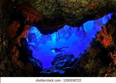underwater saipan image