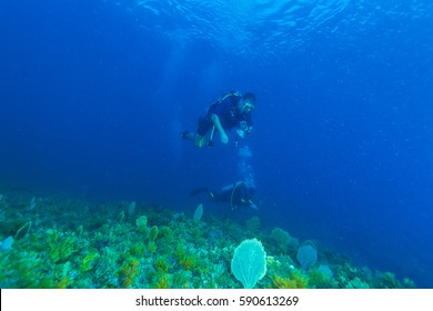 Underwater scene with two scuba divers and the beautiful surface of the Caribbean sea Cuban diving