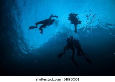 Underwater sea and scuba divers