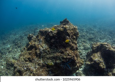 Underwater seascape with natural sunlight through water surface and rocks on the seabed.underwater background
