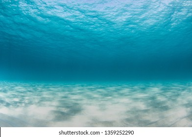 Underwater seascape of a sandy bottom and crystal clear turquoise water.