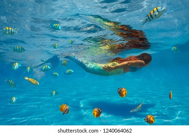 Underwater shoot of swimming mermaid with fishes