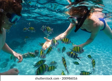 Underwater shot of the couple snorkeling in clear sea with fish