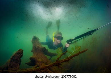 Underwater shot of the hunter diving with spear gun in the lake with poor visibility