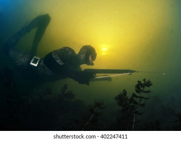 Underwater shot of the hunter with speargun in a lake with dirty water
