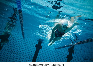 Underwater shot of young female swimmer swimming in pool. Young female swimmer training in the pool.