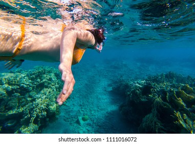 Underwater shot of a young woman snorkeling in tropical sea above coral reef