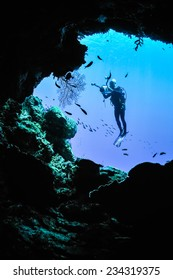 Underwater silhouette in Banda, Indonesia. There are diver is taking picture of sea fan.