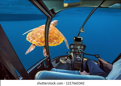 Underwater submarine ship following a marine green turtle, Chelonia mydas, swimming in blue water with copy space. Holidays and travel concept.