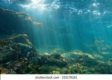 Underwater sunbeams through the water surface viewed from the seabed on a reef of the Caribbean sea, natural scene