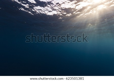 Underwater sunlight at surface in top corner