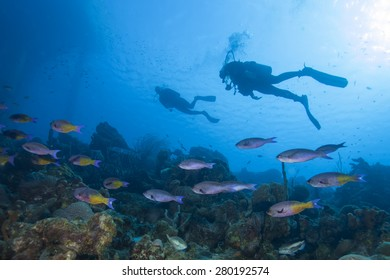 Underwater tropical coral reef with scuba diver silhouette