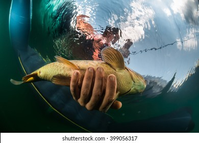 Catching Fish Images Stock Photos Vectors Shutterstock