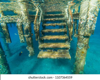 Underwater view of a sea pontoon with coral and algae deposition