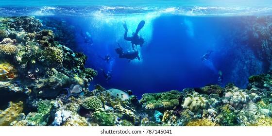 underwater world scuba divers